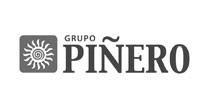 Grupo Pineiro